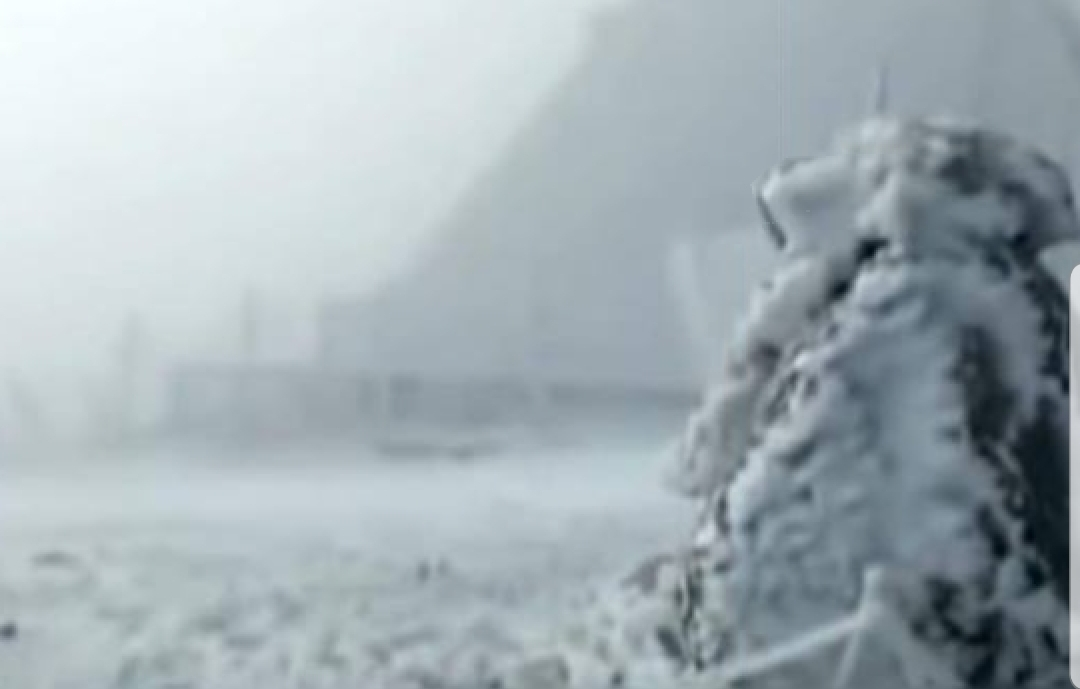 A nins in Romania. Primele imagini